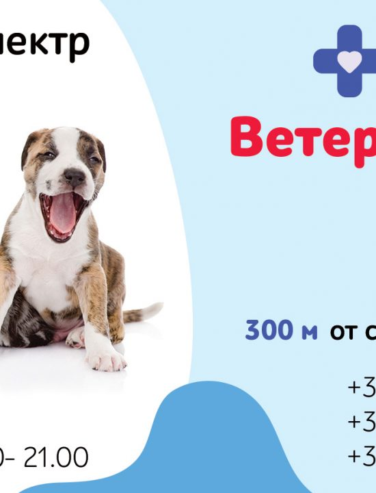 Рекламный плакат в метро для ветеринарной клиники «Zoohelp». Дизайн. Размещение.